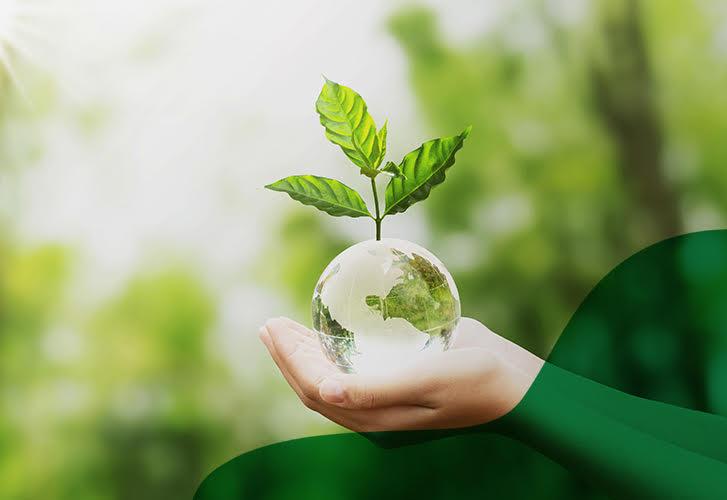 Novo Verde no painel Economia Circular & Sustentabilidade
